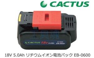 画像2: カクタスリチウムイオンバッテリー
